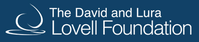 David and Lura Foundation logo