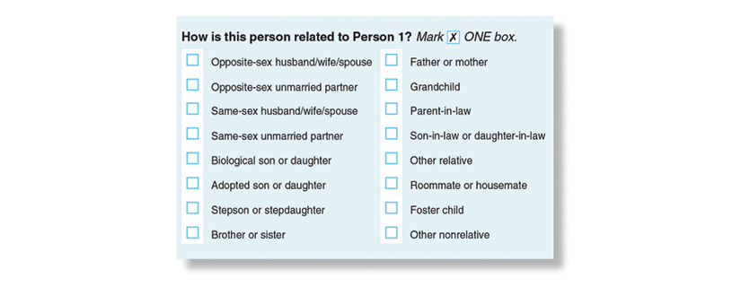 Detail from 2020 US Census